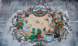"""เปิดเมืองกาแฟ โรบัสต้าสะบ้าย้อย โรบัสต้าจากถิ่นกำเนิด"""""""