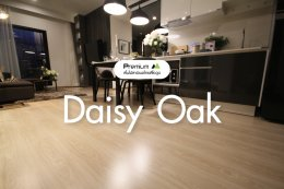 พื้นไม้ลามิเนต สี Daisy Oak