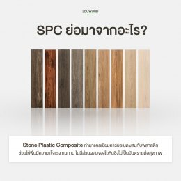 เรื่องน่ารู้..พื้นไม้ SPC ทนชื้น กันปลวก ลีโอวูด