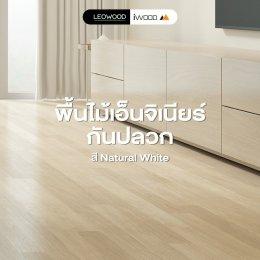 พื้นไม้เอ็นจิเนียร์กันปลวก โทนอ่อน สี Natural White
