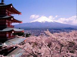 (โปร5) นารา เกียวโต นาโกย่า อิซาวะ โตเกียว 6วัน 3คืน (TG)