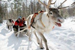 """ทัวร์ยุโรป สแกนดิเนเวีย """"บุกบ้านซานต้า ที่โรวาเนียมี่"""""""