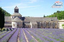 ทัวร์ยุโรป ฝรั่งเศส เสน่ห์แห่งแคว้นโพรวองซ์ ดินแดนแห่งความหลากหลาย