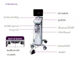 Thermage FLX Body Tip ดูแลปัญหาหน้าท้อง ต้นแขน ต้นขาไม่กระชับอย่างเห็นผล แบบ X 4