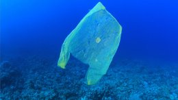 ของพรีเมี่ยมลดโลกร้อน  ได้เวลาลดโลกร้อน! เปลี่ยนจากถุงพลาสติกเป็นถุงผ้าด้วยกระเป๋าพรีเมี่ยมที่ออกแบบเองได้
