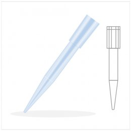 Pipet Tip 200-1000 ul.,Blue (Big Pack)