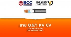สายไฟ KV CV 0.6/1 Bangkok Cable บางกอก (XLPE INSULATED AND PVC SHEATHED CABLE)