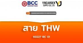 สายไฟ THW Bangkok Cable บางกอก 60227 IEC 01