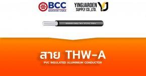 สายไฟ THW-A Bangkok Cable บางกอก (TIS 293-2541)