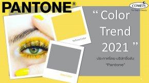 """Color Trend 2021"" ประกาศโดย บริษัทชื่อดัง ""Pantone"""