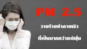 PM 2.5 วายร้ายทำลายผิวที่เป็นมากกว่าแค่ฝุ่น