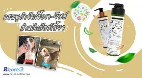 รีวิว Recreo แชมพูสมุนไพรปราศจากสารเคมี กำจัดเชื้อรายีสต์ เห็บหมัด สำหรับสุนัขและแมว