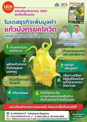 สวนเกษตรแก้วมังกร_Kennydragonfruit_แก้วมังกรสีเหลือง_หนังสือเคหเกษตร