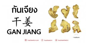 Ganjiang 干姜 Ginger