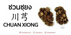 CHUAN XIONG (川芎)