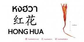 หงฮวา (红花) - ข้อมูลสมุนไพรจีน