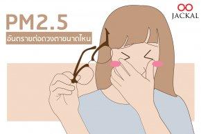 ฝุ่น PM2.5 มีผลต่อดวงตาขนาดไหน | ร้านแว่นตา Jackalclub เชียงใหม่