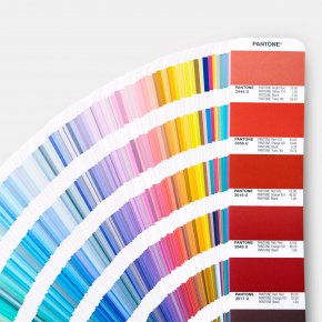 Your color, Our expert