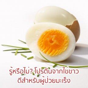 โปรตีนอัลบูมินในไข่ขาวกับผู้ป่วยโรคมะเร็ง