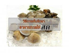 วิธีการเก็บรักษาอาหารทะเลให้สด