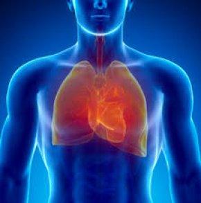 Basic of Life หัวใจเต้นและการหายใจเป็นพื้นฐานของการมีชีวิต