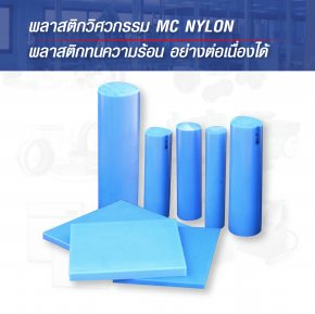 ENGINEERING PLASTICS -  MC Nylon