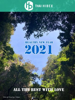Wishing you a safe andhealthy new year 2021