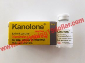 KANOLONE (TRIAMCINOLONE ACETONIDE) INJECTION