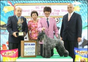 Sc Plaza Thailand Championship Dog Show 12-13 June 2010 AB2