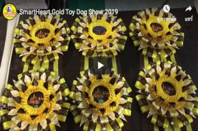 SmartHeart Gold Toy Dog Show 2019