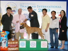 AM.TH.GRAND CH. DOGGY WORLD'S APPLE JACK JUNIOR