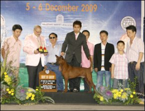 TH.GRAND.CH.TAWAN NAMFAH DAENG - PLUANG@SIAM