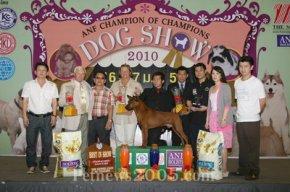 ANF Champion of Champions Dog Show 2010