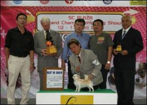 SC PLAZA Thailand Championship Dog Show 10-11 April 2010