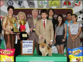 SC PLAZA Thailand Championship Dog Show