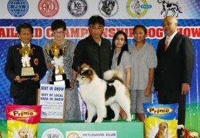 THAILAND CHAMPIONSHIP DOG SHOW 2010