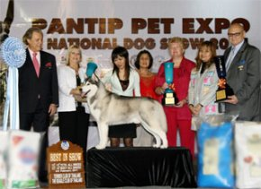 PANTIP PET EXPO & NATIONAL DOG SHOW 2011