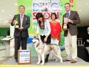 Ayutthaya Park Dog show 2011