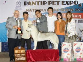 PANTIP PET EXPO & NATIONAL DOG SHOW 2012(AB3)