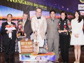 NONGKHAI Dog Show 2012(AB1)