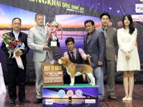 NONGKHAI Dog Show 2012(AB2)
