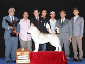 Terrier Club Of Thailand Championship Dog Show(AB2)