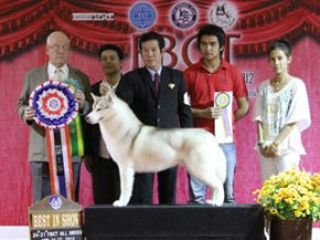 FBCT Championship Show 1/2012(AB2