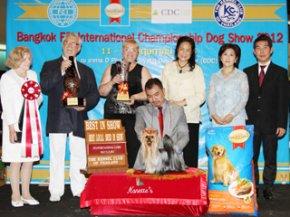Bangkok FCI International Championship Dog Show 2012(AB2)