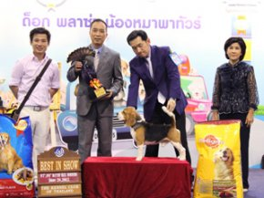 Thailand International Dog Show 2012(AB2)
