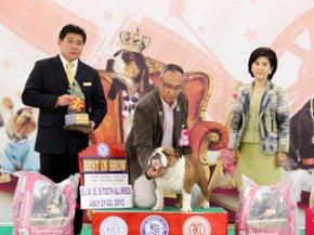 The Mall-Eukanuba World Challenge International Championship Dog Show 2012(AB3)