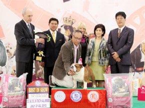 The Mall-Eukanuba World Challenge International Championship Dog Show 2012(AB4)