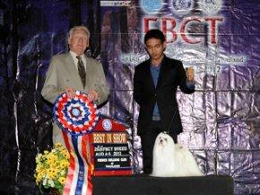 FBCT Championship Show 2/2012(AB3)
