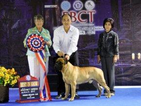 FBCT Championship Show 2/2012(AB4)