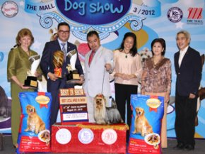 The Mall Championship Dog Show 3/2012(AB1)